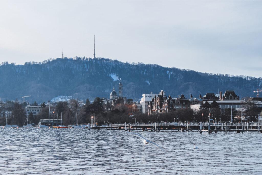 Vista de cisnes, gaivotas voando e barcos no famoso e enorme Lago de Zurique. Ao fundo, é possível ver parte da cidade antiga e montanhas cobertas de vegetação.