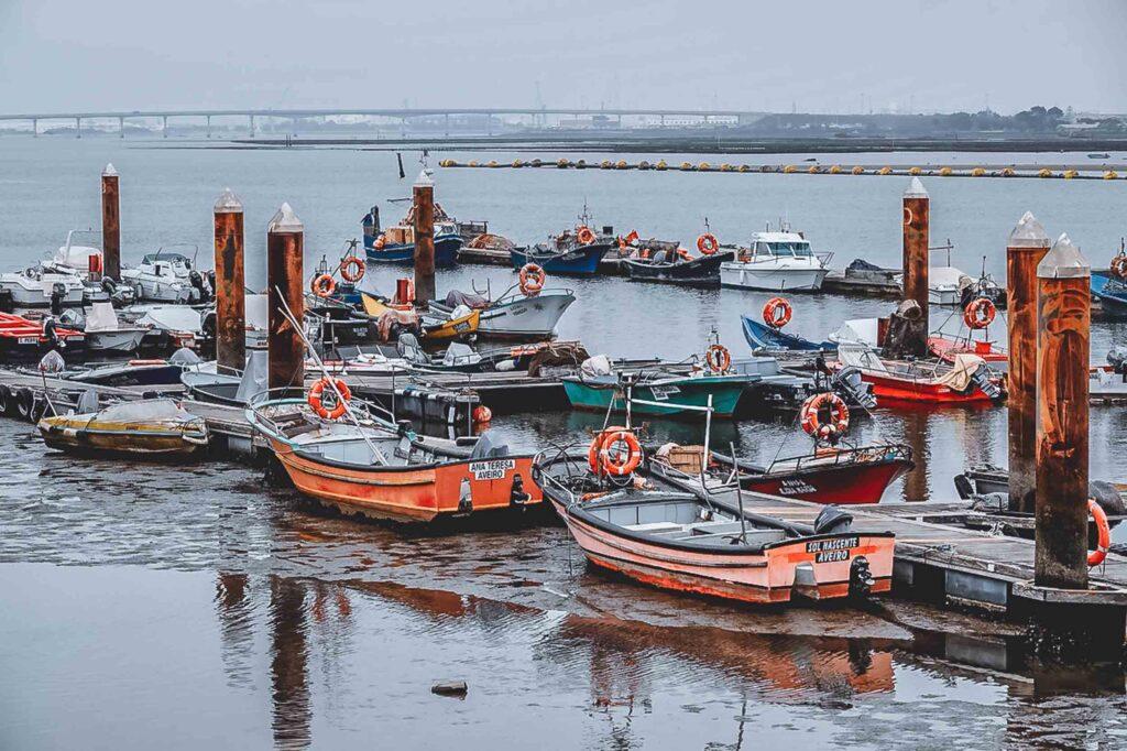 Vários barcos pequenos, coloridos e com boias salva vidas atracados em um cais no Rio Vouga.